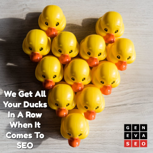 we-get-your-ducks-in-a-row-when-it-comes-to-seo-geneva